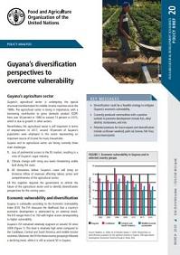 FAO policy analysis